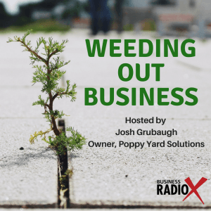Tucson Business Radio: Weeding Out Business Ep 8