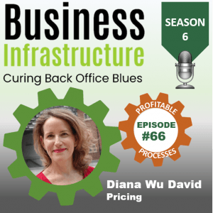 Episode 66: Diana Wu David's Pricing Process