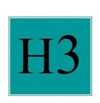 H3Logo2