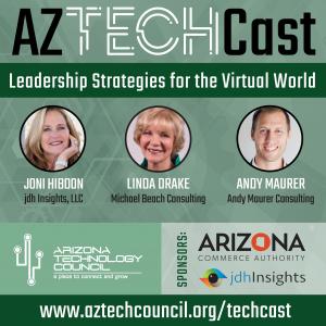 Leadership Strategies for the Virtual World E12